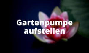 Gartenpumpe aufstellen