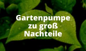 Gartenpumpe zu groß Nachteile