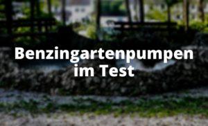 Benzingartenpumpen im Test