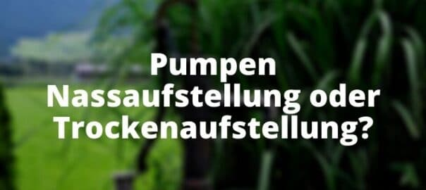 Pumpen Nassaufstellung oder Trockenaufstellung?