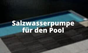 Salzwasserpumpe für den Pool
