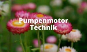 Pumpenmotor Technik