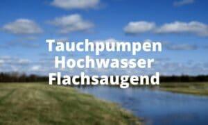 Tauchpumpen Hochwasser Flachsaugend